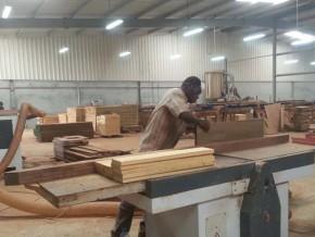 l'incubateur-de-la-filière-bois-ouvre-ses-portes-à-nkok-en-avril-prochain