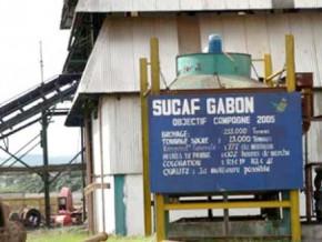 sucaf-filiale-locale-du-groupe-sucrier-français-somdiaa-réalise-des-ventes-de-24-000-tonnes-en-neuf-mois