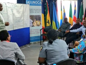 l'afrique-centrale-s'organise-pour-prévenir-les-conflits-et-le-pastoralisme