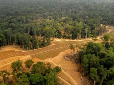 l-afd-outille-la-societe-civile-gabonaise-dans-le-suivi-du-respect-des-engagements-socio-environnementaux