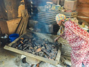 les-populations-du-bassin-du-congo-consomment-46-millions-de-tonnes-de-viande-sauvage-chaque-année