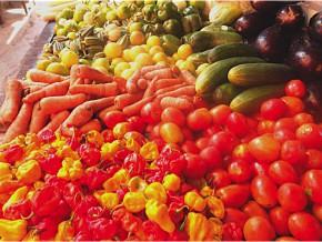 le-gouvernement-lance-le-fonds-national-de-développement-agricole