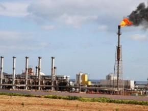 perenco-transfère-la-gestion-des-participations-de-l'etat-à-gabon-oil-company