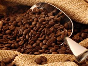 la-filière-café-cacao-a-généré-un-chiffre-d'affaires-de-953-millions-de-fcfa-au-cours-de-la-campagne-2015-2016