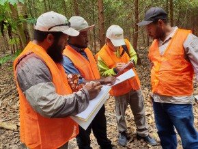 le-forest-stewardship-council-prépare-son-implantation-au-gabon