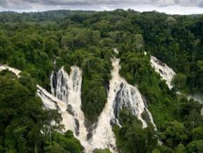 terea-restitue-l'étude-biologique-du-milieu-naturel-de-deux-projets-hydroélectriques-au-gabon