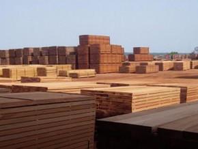 avec-7-des-importations-chinoises-de-bois-sciés-au-1er-trimestre-2018-le-gabon-se-positionne-en-premier-fournisseur-africain-de-l'empire-du-milieu