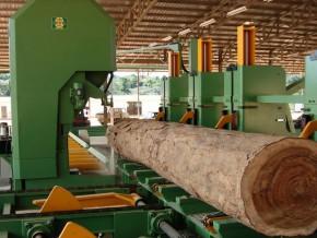 la-banque-mondiale-veut-investir-905-millions-de-dollars-pour-développer-la-filière-bois-au-gabon