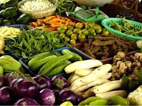 sécurité-alimentaire-la-fao-forme-les-agriculteurs-gabonais-aux-techniques-de-la-transformation