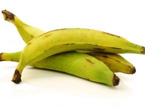 le-gabon-importe-annuellement-près-d'un-million-de-tonnes-de-bananes-du-cameroun