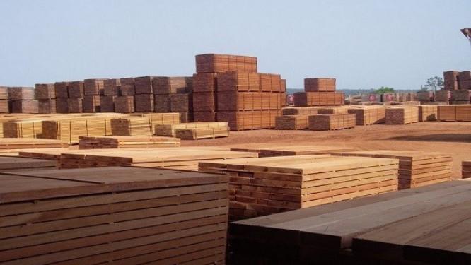 les-exportations-de-bois-gabonais-vers-l'europe-en-baisse-en-septembre-2018