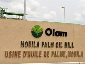la-filière-huile-de-palme-poursuit-sa-consolidation-au-gabon