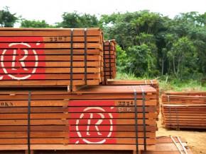 proparco-soutient-rougier-pour-une-gestion-responsable-des-forêts-d'afrique-centrale