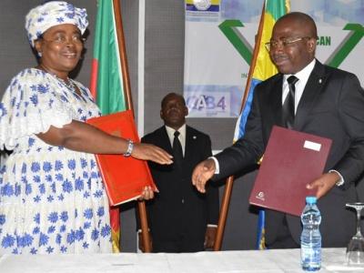 le-gabon-et-le-cameroun-preparent-l-interconnexion-de-leurs-reseaux-de-telecommunications-haut-debit-a-fibre-optique