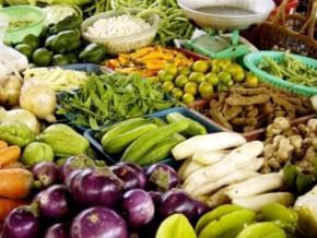 les-importations-de-denrées-alimentaires-en-baisse-sur-les-neuf-premiers-mois-de-l'année