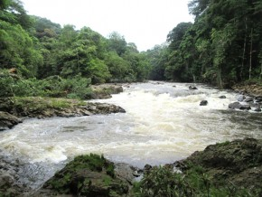 le-fgis-méridiam-et-edf-artelia-biotop-bouclent-les-consultations-publiques-dans-le-cadre-du-projet-de-centrale-hydroélectrique-de-kinguélé-aval