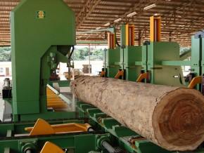 transformation-du-bois--80-nouvelles-usines-seront-ouvertes-cette-année-à-la-zone-économique-spéciale-de-nkok