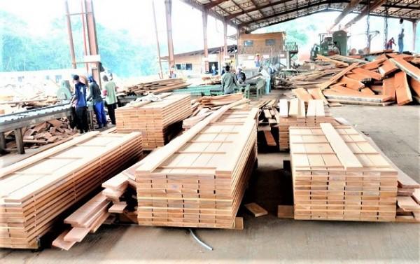 secteur-bois-pres-de-200-personnes-formees-au-systeme-de-tracabilite-stminef-au-gabon
