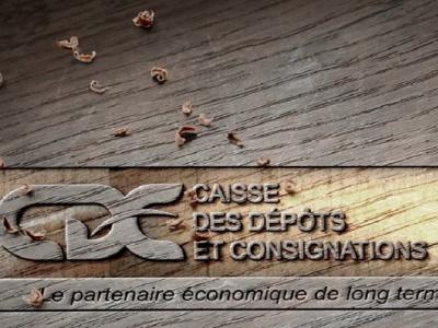 la-caisse-des-depots-et-consignations-du-gabon-desormais-capable-de-lever-les-fonds-sur-les-marches-financiers