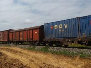 le-transport-du-manganèse-du-bois-et-des-produits-pétroliers-dope-l'activité-ferroviaire-au-gabon
