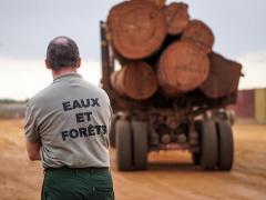 cemac-afin-de-maturer-les-projets-de-transformation-locale-l-interdiction-d-exporter-les-grumes-reportee-en-2023