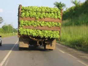 le-nombre-élevé-d'intermédiaires-augmente-de-42-le-coût-des-transactions-sur-les-produits-agricoles-sur-le-corridor-cameroun-gabon