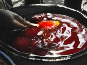 le-cameroun-va-importer-100-000-tonnes-d'huile-de-palme-brute-du-gabon-et-de-l'indonésie