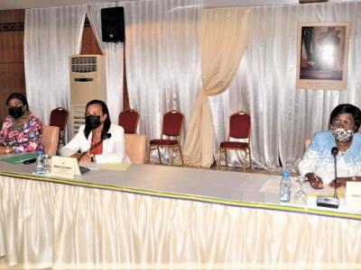 le-senat-gabonais-examine-le-projet-de-loi-portant-restructuration-de-l-office-national-de-l-emploi