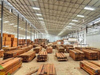 bois-la-societe-indienne-greenply-lorgne-la-zone-industrielle-speciale-de-lambarene