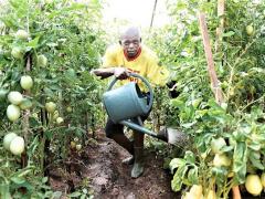 agro-industrie-une-loi-pour-contraindre-les-entreprises-a-s-approvisionner-a-50-aupres-des-agriculteurs-locaux